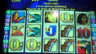 Brazil Slot machine Bonus.