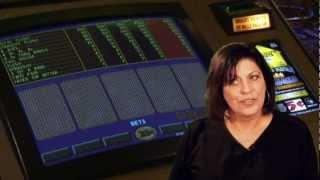 Gambling author roulette softwares