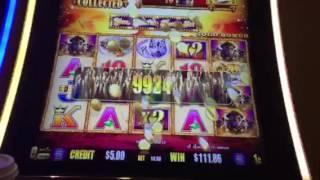 Buffalo Gold Slot Machine Bonus Big Win Treasure Island Casino Las Vegas