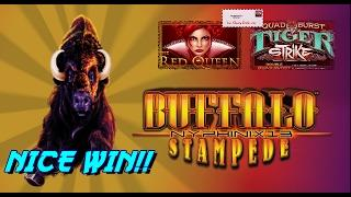 •NEW DELIVERIES• Tiger Strike & Red Queen Slot Bonuses & Buffalo Stampede NICE WIN
