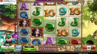White Rabbit Slot- DON'T TRY THIS AT HOME!
