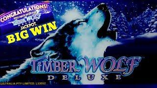 Timber Wolf Deluxe Slot Machine - •SUPER BIG WIN• | Timber Wolf Deluxe JACKPOT WON | W4 Jackpot Slot