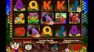 IGT Super Hoot Loot Video Slot Free Spins Bonus