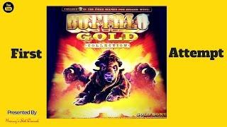 (First Attempt )  Aristocrat - Buffalo Gold : 2 Bonuses