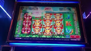THE BEES PAID!  I needed the 5th REEL for a MONSTER HIT! Sizzling Slot Jackpots CASINO Videos