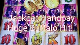 *Jackpot Handpay** Huge Buffalo Hit** Rare* 5 coin trigger and more! Buffalo Grand Slot machine.