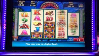 Jumpin' Jalapeños - Bonus - $2.50 Bet Sat down at this machine