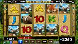 Majestic Forest slot - 5,300 win!