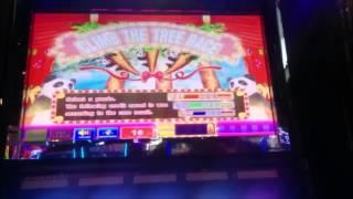 Aruze Gaming Bamboo Panda Slot Machine Bonus (2 clips)