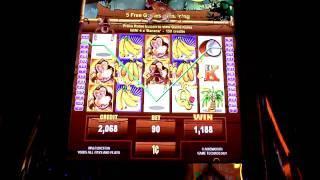 Jungle Monkeys Bonus Slot Win at Borgata