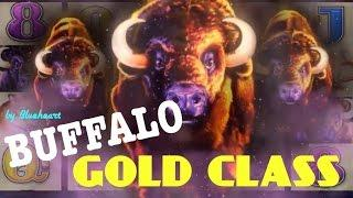 BUFFALO GOLD CLASS slot machine BONUS/LIVE PLAY/ WINS