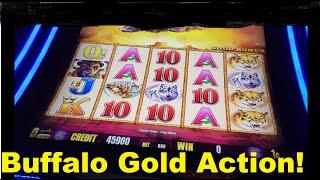 Buffalo Gold Love Play Action with Exciting Wins