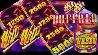 ⋆ Slots ⋆FIRST TRY !! NEW GAME ! WILD WILD BUFFALOOOOO !!⋆ Slots ⋆WILD WILD BUFFALO Slot (Aristocrat)⋆ Slots ⋆栗スロ New Slot
