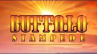 Buffalo Stampede Slot Bonus  BIG Win # 2 -Aristocrat