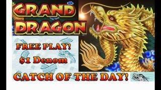 $1 Denom – Catch of the Day! – Ainsworth Grand Dragon – Live Play & Bonus with Retriggers!!
