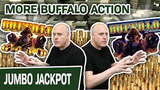 ⋆ Slots ⋆ Even MORE Buffalo Action! ⋆ Slots ⋆ GIANT JACKPOT on Buffalo Deluxe + Buffalo Gold Too!