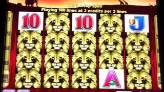 100 Lions - Aristocrat - HUGE WIN Slot Line Hit