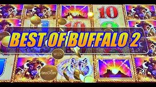 BEST OF BUFFALO SLOTS 2: Just Handpays on Buffalo Link, Buffalo Diamond, Buffalo Gold, Buffalo Revol