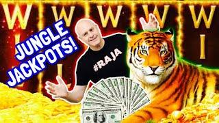 ⋆ Slots ⋆ Full Screen of Tigers & Wild's Oh My! ⋆ Slots ⋆ High Limit Golden Jungle Jackpots!