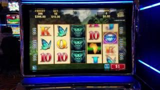 African diamond slot machine free play woodbine poker room hours