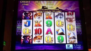 Aristocrat Buffalo - (Elk) Slot Win - Parx Casino - Bensalem, PA