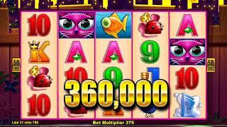 MISS KITTY GOLD Video Slot Casino Game with a MR CASHMAN CASH DROP BONUS