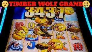 NEW GAME!! •TIMBER WOLF GRAND•  •ORB HUNTER• •ALADDIN•