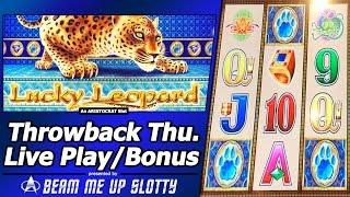 Lucky Leopard - TBT Live Play  and Free Spins Bonuses