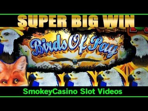 casino online free bonus american poker ii