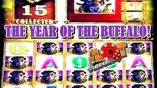 **JACKPOT & SUPER BIG WINS** 2016 THE YEAR OF THE BUFFALO | SlotTraveler