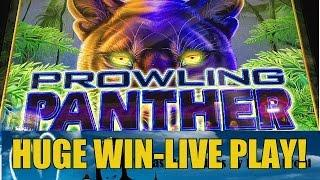 Huge Win! Prowling Panther Slot Machine Bonus-Live Play