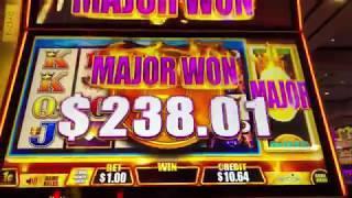Major Progessive Win Fast Cash Buffalo Deluxe