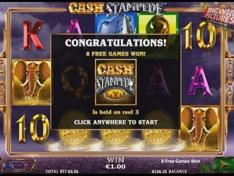 Casino stampede game casino anderson