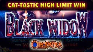San Manuel • High Limit Room • Cleopatra •• Black Widow •• The Slot Cats •