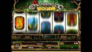 Enchanted Woods• - Onlinecasinos.Best
