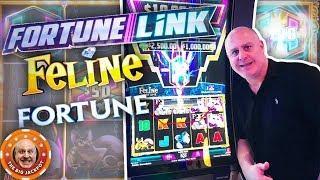 4 HUGE JACKPOT$ on Fortune Link! •Feline Fortune BONUS WINS!