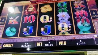 dragon cash big bets
