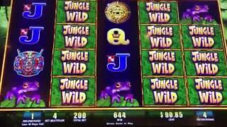 Jungle Wild with Winning Streak Slot Machine -- Max Bet Bonus