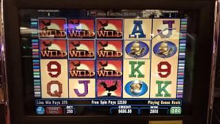 Red Rooster Bonus Jackpot at $50 A Spin