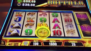 Aristocrat FAST CASH BUFFALO Slot Machine Bonus & Re Triggers