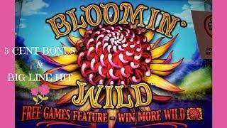 BIG WIN on BLOOMIN' WILD SLOT MACHINE BONUS - 5-Cent Denomination - CLASSIC ARISTOCRAT