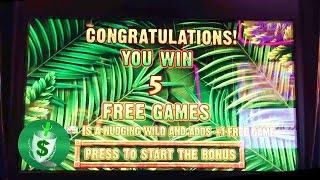 Jungle Riches slot machine, Malfunction Voids Your Win?