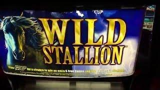 BIG WIN - Wild Stallion Slot Machine Bonus