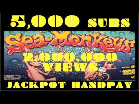 **EPIC JACKPOT** 5,000 SUBS 2,000,000 VIEWS $40 Bonus Spins - Sea Monkeys Slot Machine