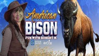 HUNTING AMERICAN BISON FOR THE WIN WITH ROBERT