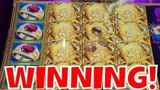 5 BONUS SYMBOLS ON GOLD STACKS!  HUGE WINNING SESSION!