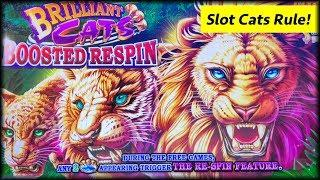 Ultimate Fire Link • Brilliant Cats • The Slot Cats •