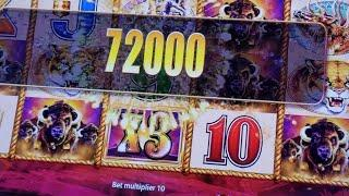 Scotty And Bruce steal $1000+ from Casino on Buffalo! Buffalo Gold$ Buffalo Grand and Ms Kitty Gold!
