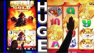 MASSIVE Buffalo Gold machine * 4 COIN trigger + 12 HEADS + 40 SPINS =  ......????