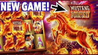 •️ New Game •️ - Winning Big on Mustang Fortune !